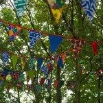 gekleurde vlaggen 05