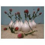 witte vaas <p>€ 15,00 p/s VERKOOP</p> <p>12 vazen / 30 x 20 cm (lxb) / aardewerk</p>
