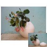 witte vaas <p>€ 75,00 VERKOOP</p> <p>1 vaas / 65 x 50 cm (lxb) / aardewerk</p>
