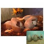 grote eieren <p>€ 25,00 p/s VERHUUR</p> <p>5 stuks / 60 x 40 cm (lxb) / polyester</p>