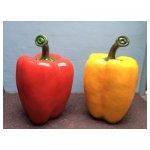 paprika <p>€ 35,00 p/s VERHUUR</p> <p>2 stuks / 130 x 70 cm (lxb) / polyester</p>